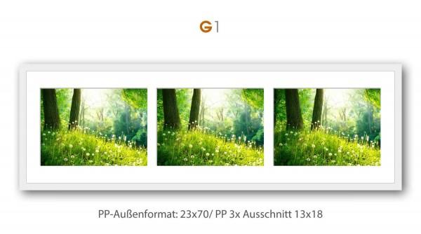 Galerie Bilderrahmen Alu gebürstet S3 silber