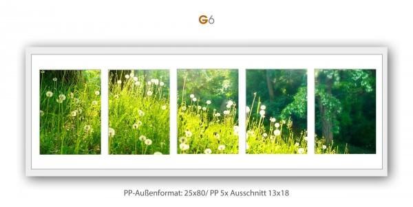 Galerie Passepartout G6 - 25x80/ PP 5x 13x18 cm