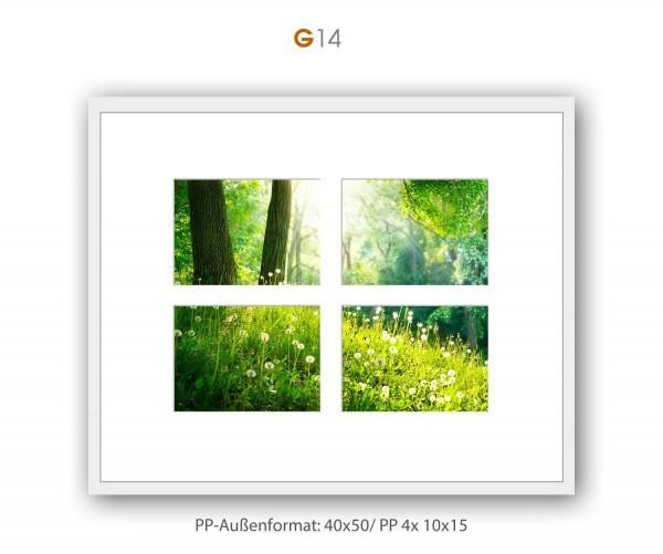 Galerie Passepartout G14 - 40x50/ PP 4x 10x15 cm