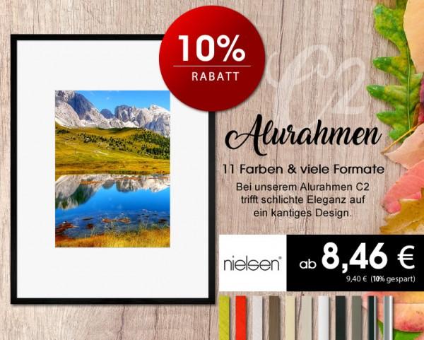 aktion-112018-alurahmen-c2-nielsen
