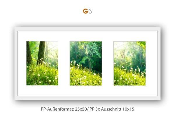 Galerie Passepartout G3 - 25x50/ PP 3x 10x15 cm