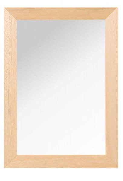 Spiegelrahmen Profil 55