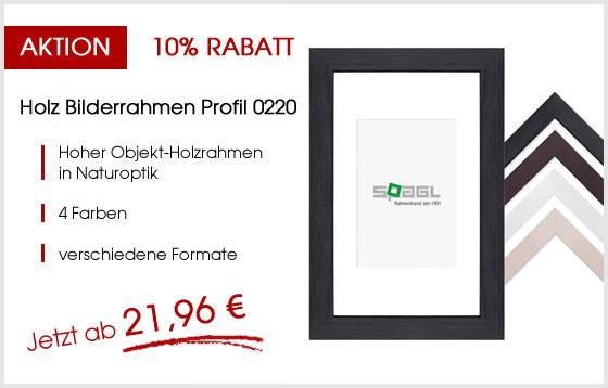 Holz-Bilderrahmen-Profil-0220-aktion