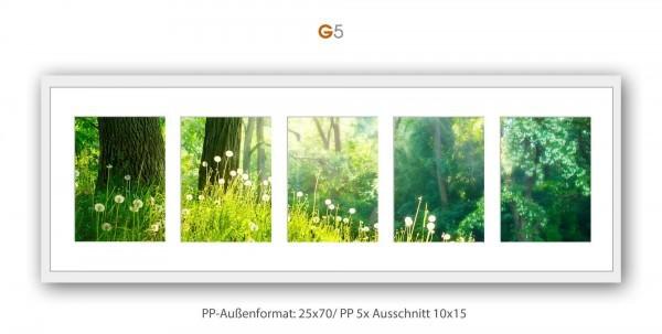 Galerie Passepartout G5 - 25x70/ PP 5x 10x15 cm