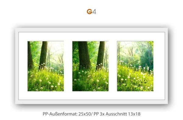 Galerie Passepartout G4 - 25x50/ PP 3x 13x18 cm