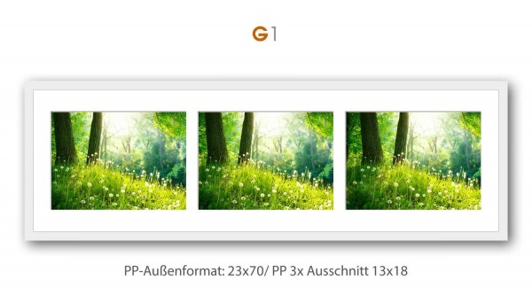 Galerie Bilderrahmen Holz Profil Top Pro
